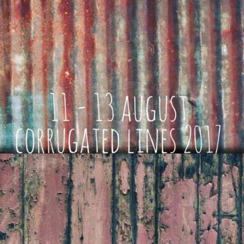 Corrugated Lines: A festival of words